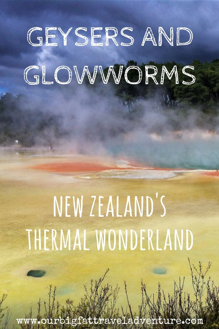 geysers and glowworms - new zealand's thermal wonderland pinterest pin