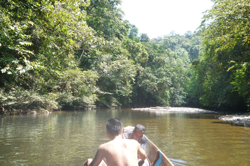 Trip on a Longboat Down the Batang Ai River