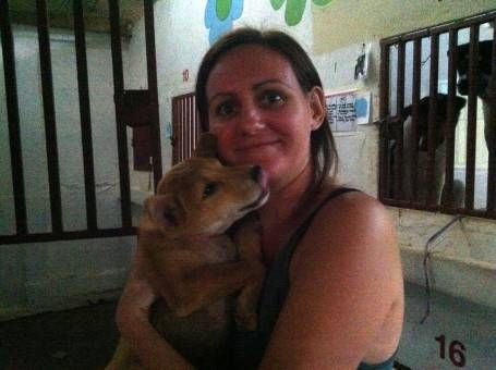 Holding a Rescue Puppy at the Dog Rescue Project, Thailand