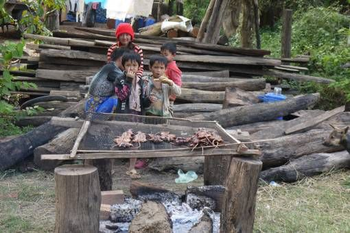 Kids Cooking Rats in Cambodia