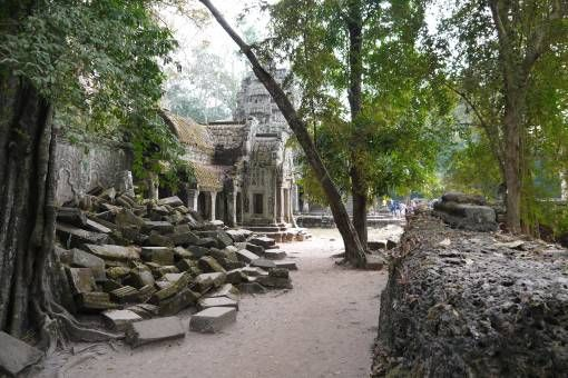 Trees and Ruins at Ta Prohm Temple