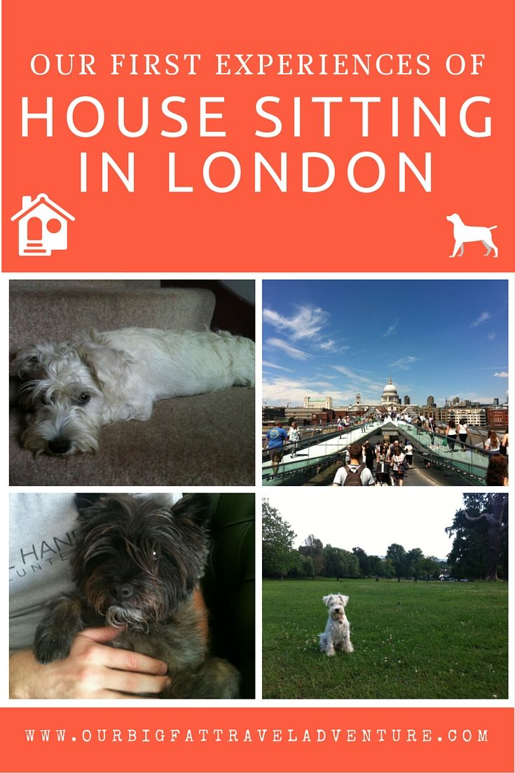Our first expereinces of house sitting in London, Pinterest