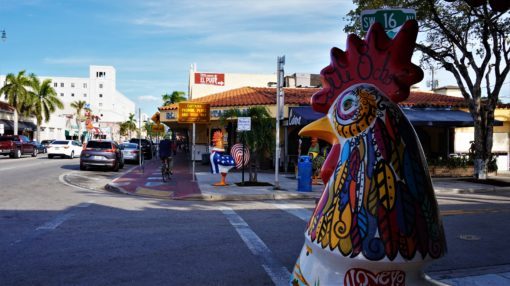 The Rooster on Calle Ocho, Miami