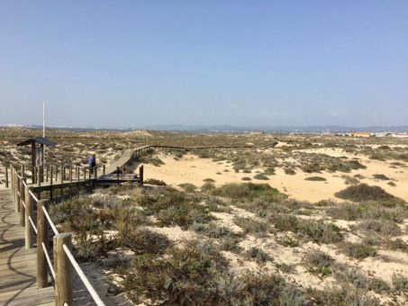 Wooden walkway over the sand on an island in the Ria do Formosa, Algarve