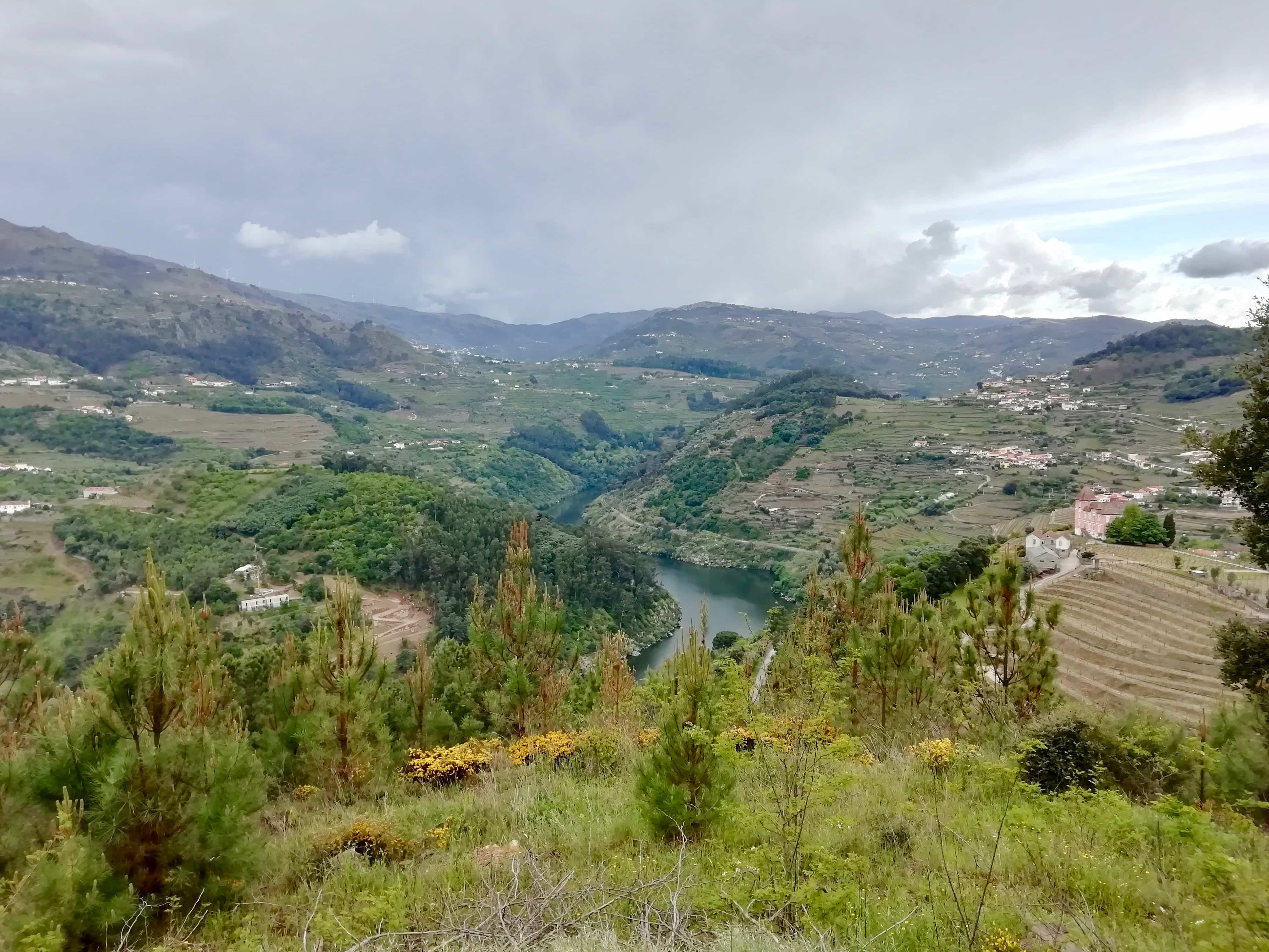 View of fields and the river in the Douro Valley in Portugal