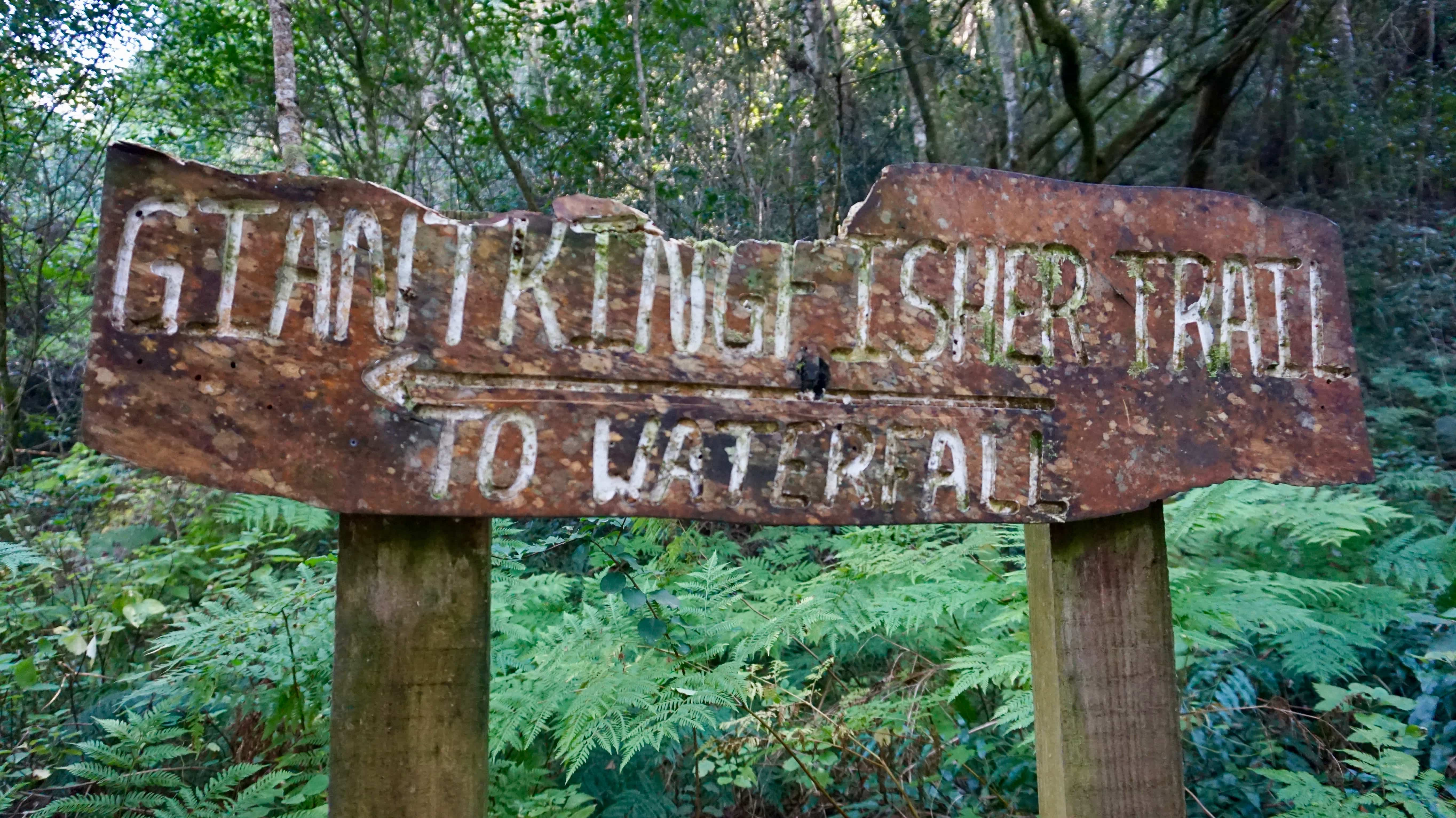Giant Kingfisher Trail sign at Wilderness National Park, South Africa