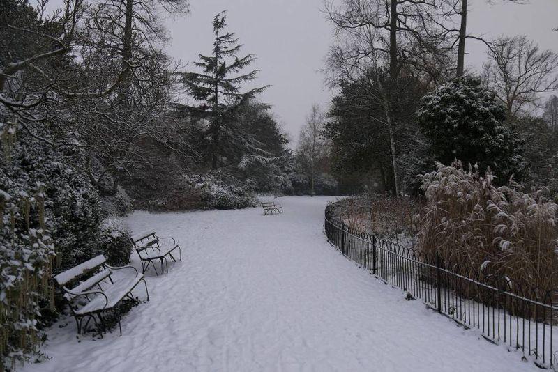 Winter in Dulwich Park