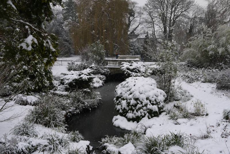 Snow Across the Lake in Dulwich Park
