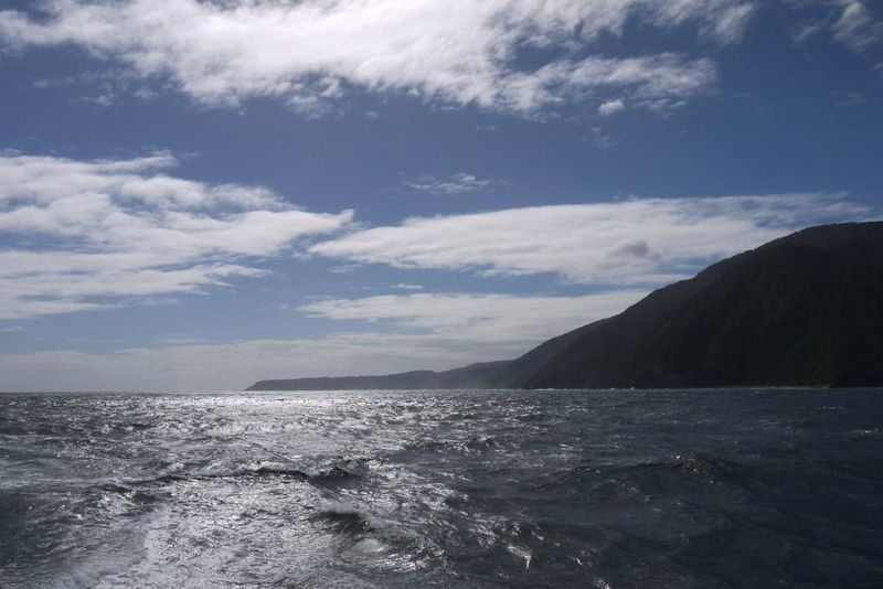 Sailing into the ocean from Milford Sound