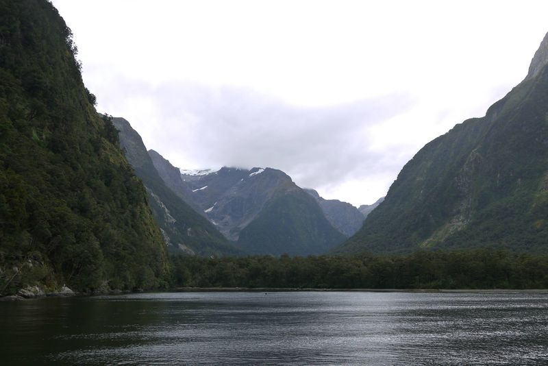Amazing Milford Sound