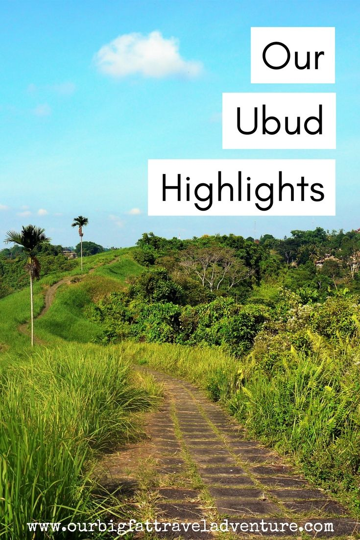 Our Ubud Highlights, Pinterest