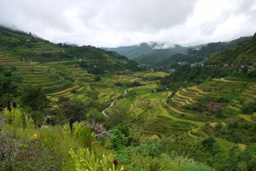 The Banaue Rice Terraces, the Philippines