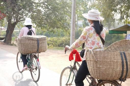 Cambodian Women Cycling