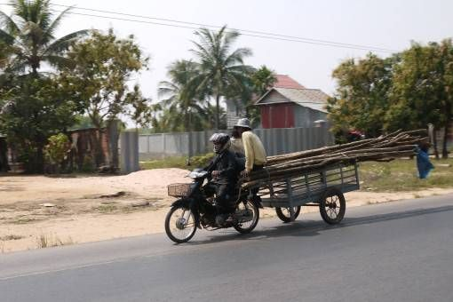 Transporting Wood in Asia