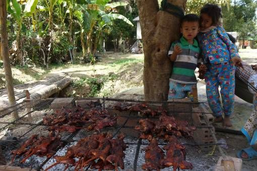 Cambodian Kids in the Countryside