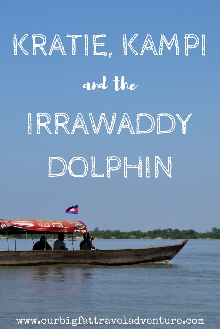 kratie, kampi and the irrawaddy dolphin pinterest pin