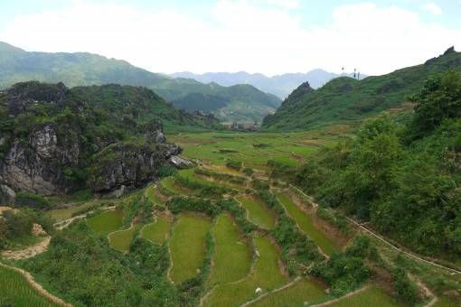 Fields of green rice terraces in Sapa, Vietnam