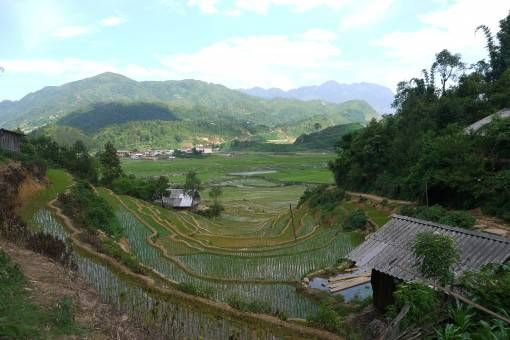 View of the valley on our Sapa trek