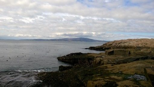 View of Mt Desert Island from Schoodic Peninsula
