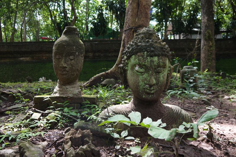 Buddha head statues at Wat Umong Temple in Chiang Mai
