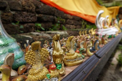 Serpent Statues at Wat Ched Yod Temple in Thailand