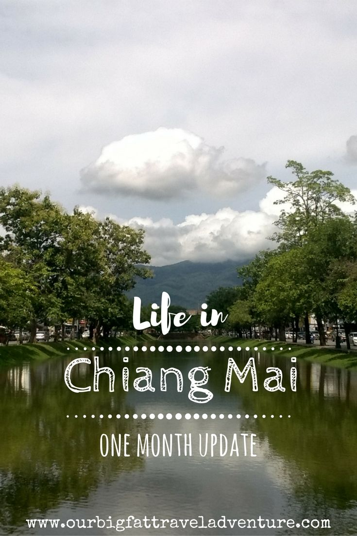 life in chiang mai one month update pinterest pin