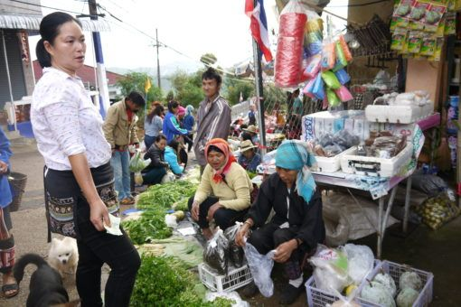 The morning market in Mae Salong, Thailand