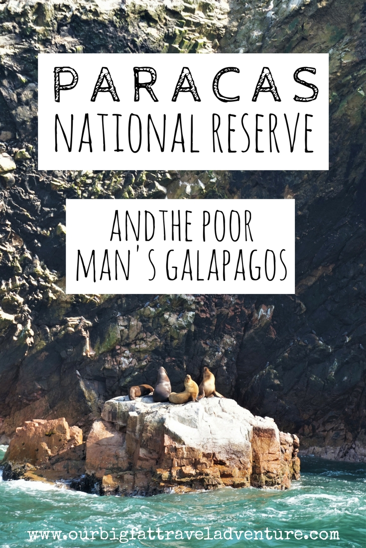 paracas national reserve and the poor man's galapagos