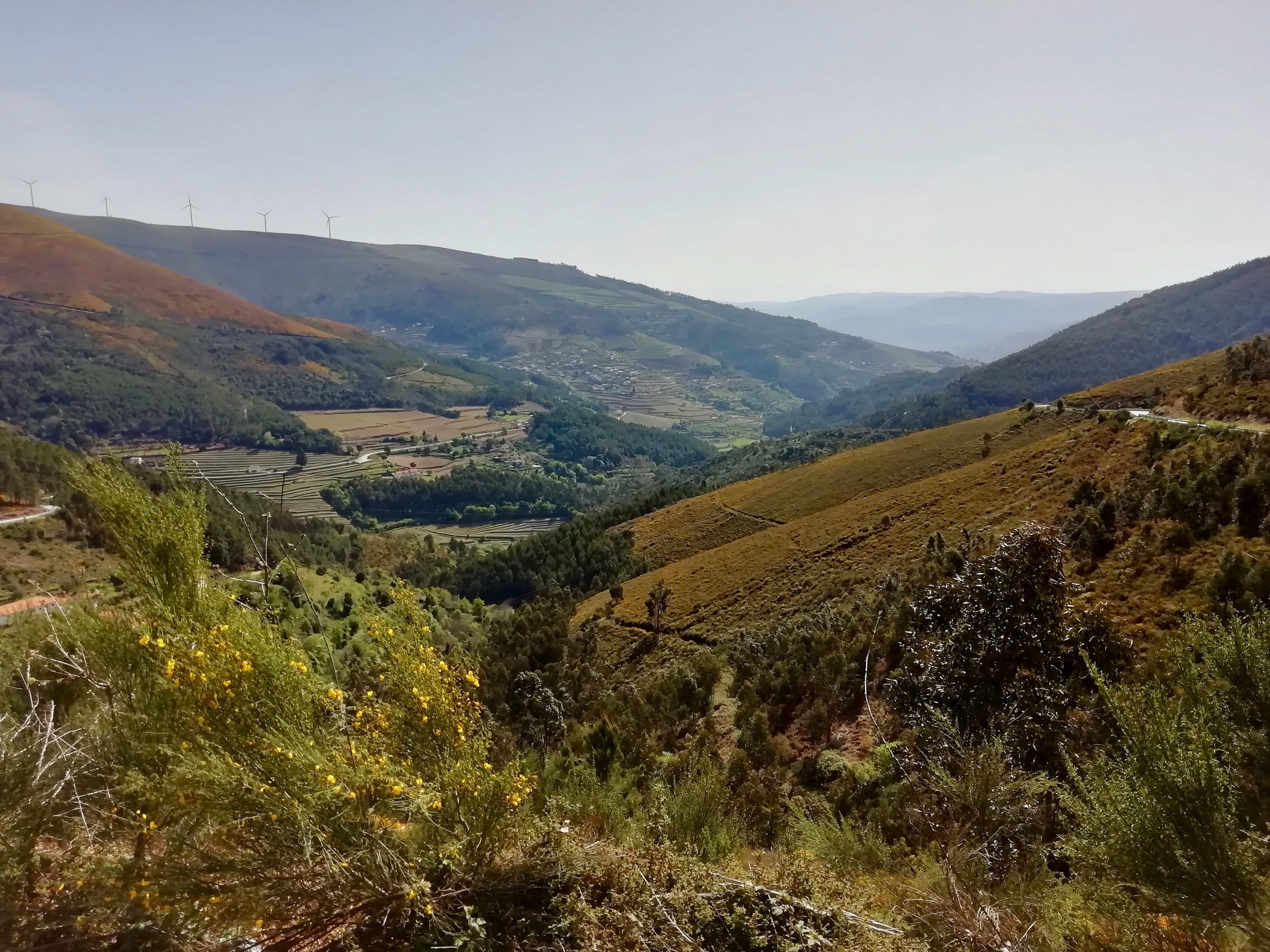 Countryside views while driving the Douro Valley