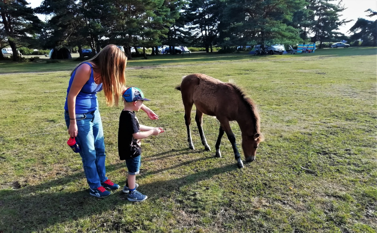 Amy and her nephew with a New Forest Pony