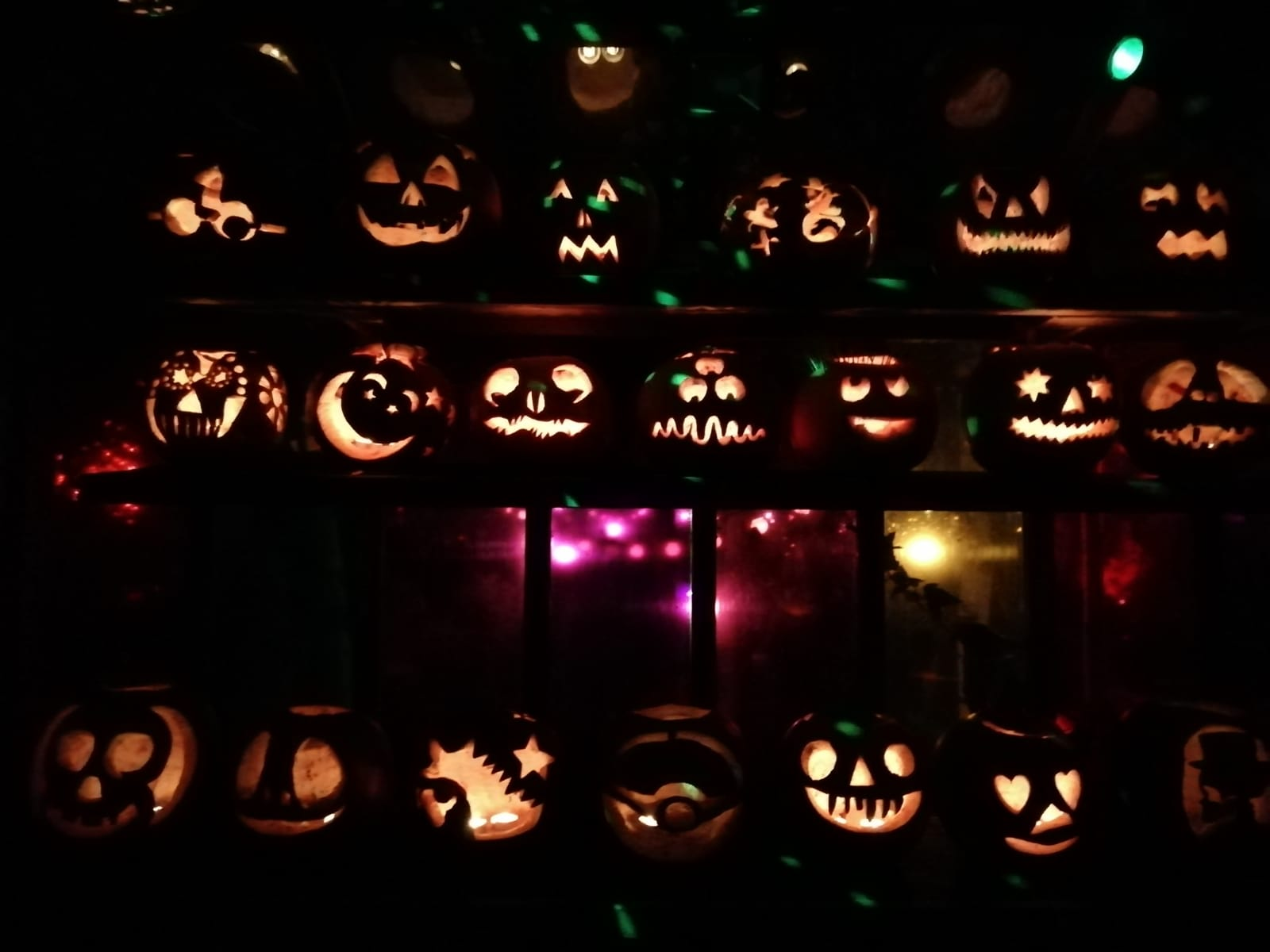 Brilliantly carved pumpkins at Dalston Eastern Curve Gardens, London